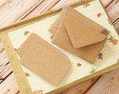 Plain Kraft Brown Mini Envelopes & Plain Kraft Note Cards 10pc set