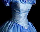 Cinderella 2015 Custom Costume