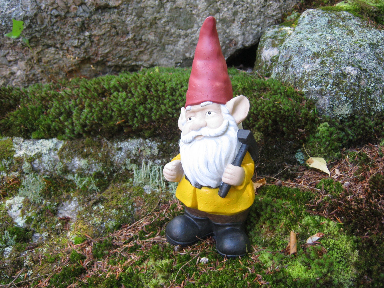 Gnome In Garden: Garden Gnome Concrete Gnome With Pick Axe Cement Gnomes