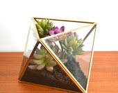 Terrarium Faux Succulent Arrangement in Geometric Planter