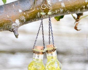 Handmade Earrings- Bottle Earrings- Lichen Globe Earrings- Bottle Jewelry- Pacific Northwest Jewelry- Lichen Earrings- Bronze Earrings