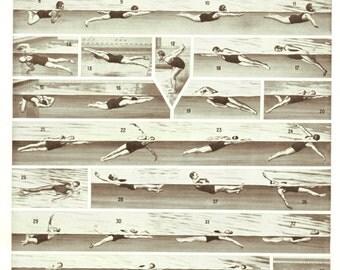 1936 Vintage swimming poster diving poster vintage Swimming art Swimming decor Sports gift Swimming gift Diving art Diving deocr Diving gift