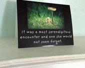 "Adventures of Claudia Antique China Doll Fungi Mushroom Card ""Serendipity"" Dolly Photography"