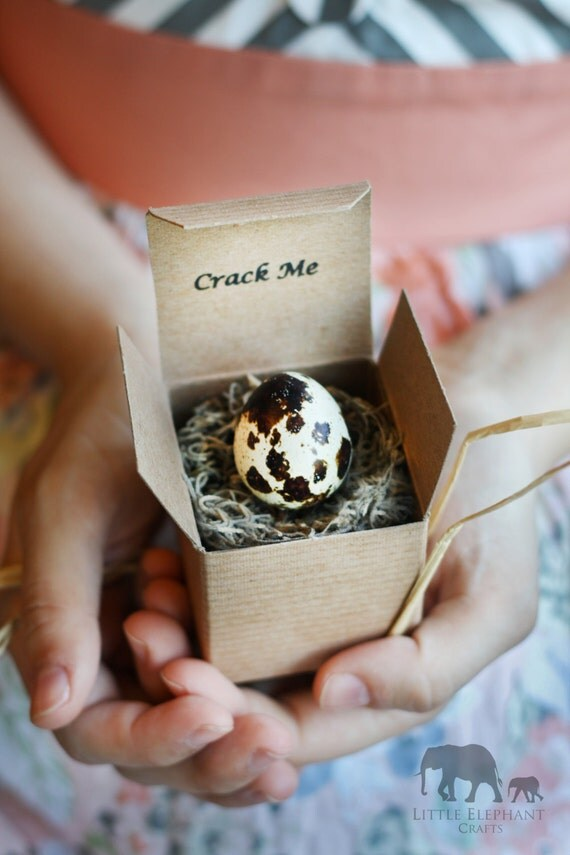 Crack Me! Quail Egg Pregnancy Announcement - Gender Reveal - Baby Shower Invitation - Crack - Custom Personalized Thanksgiving Christmas
