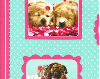 AQUA by Avanti Press, Inc. from Hugs and Kisses from Robert Kaufman Fabric Puppies Kittens Dogs Cats