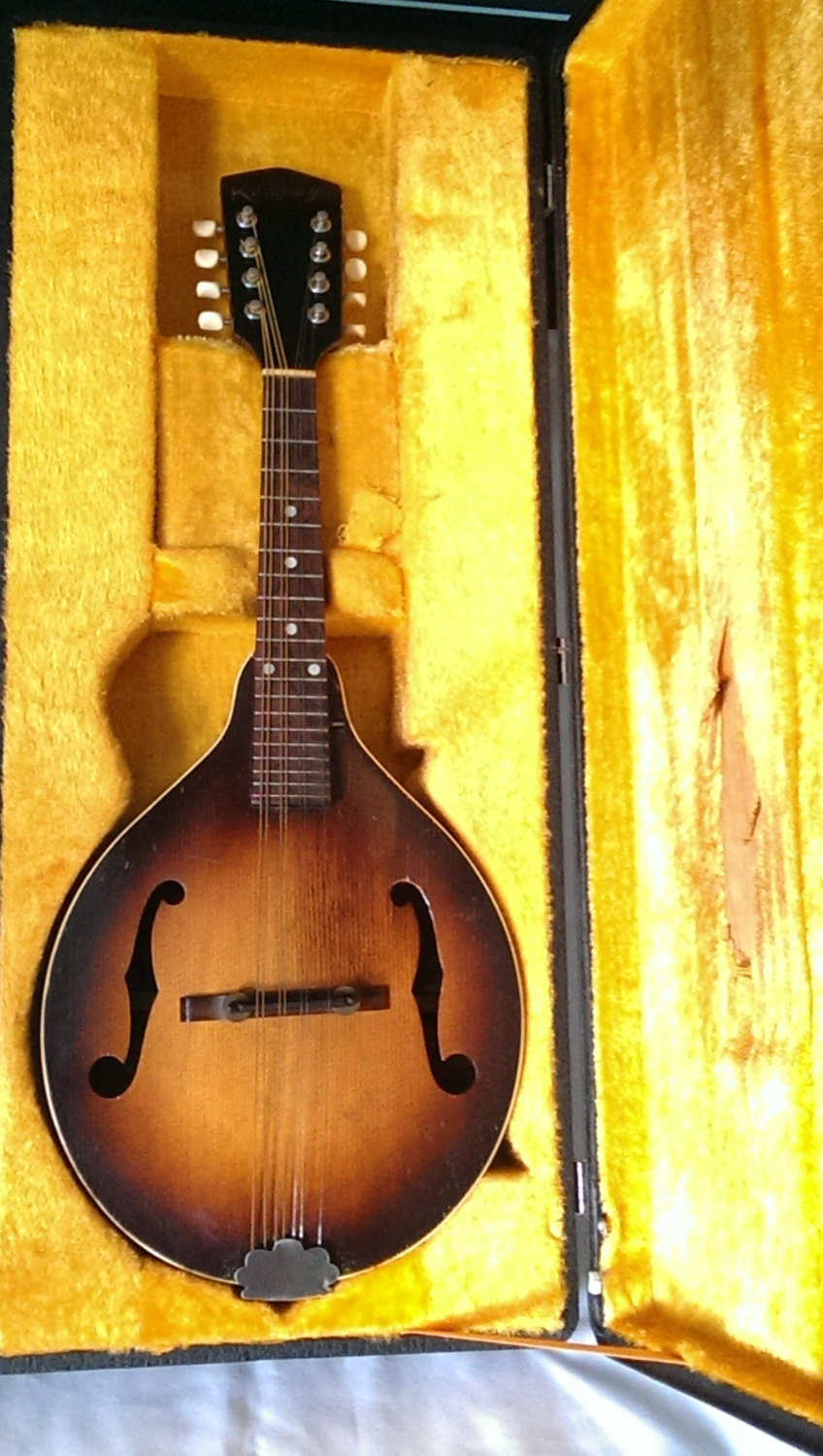 Looking for Vintage gibson mandolins movie