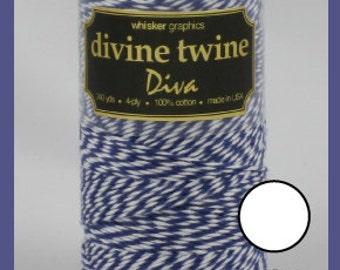 SALE! Violet Diva™ Stripe Twine from Whisker Graphics - 240 Yards