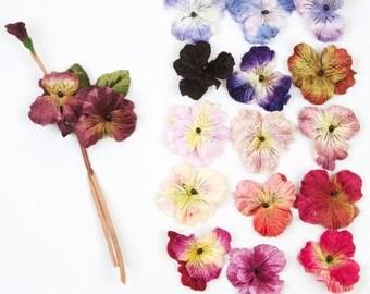 velvet pansies by Miss Rose Sister Violet