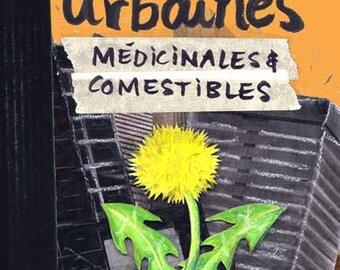 Urban medicinal and edible plants