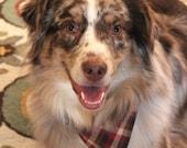 Plaid Dog Bandana, Tie On Dog Bandana, Dog Over the Collar, Thanksgiving Bandana, Brown Dog Clothes, Dog Collar Accessory, Checkered Bandana
