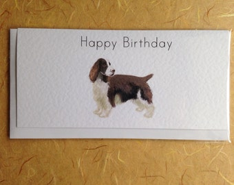 Springer Spaniel Greetings Card
