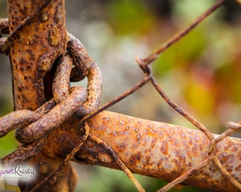 Rusted Chain-link Fence - old antique vintage rust photography
