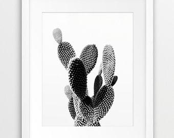 Cactus Print, Desert Wall Art, Cactus Photo Black And White, Desert Photography, Modern Wall Art, Home Office Decor, Digital Printable Art