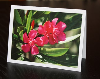 Pink Peregrina Note Cards with Lined Envelopes (set of 5)