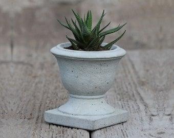 Mini Concrete Planter