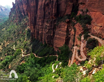 Angel's Landing Zion National Park Utah Photography