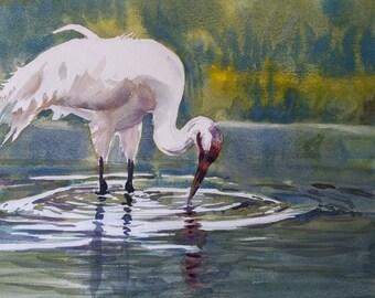 Crane, Original Watercolor Painting