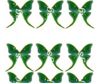 Green Moon moth set