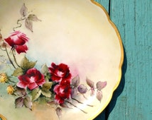 M Z Austria hand painted plate