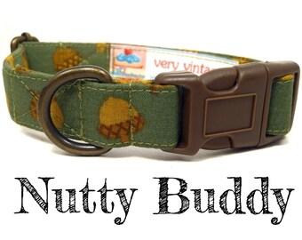 "Hunter Green Brown Acorns Dog Collar - Organic Cotton Dog Collar - All Antique Brass Hardware - ""Nutty Buddy"""