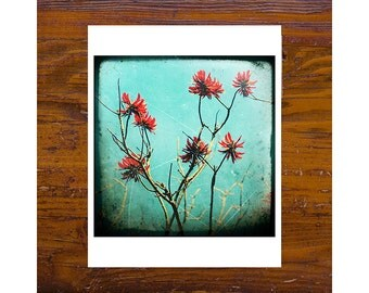 8x8 Print [JCP-012] - Coral Tree 2 - red, blue, flowers