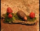 Tiny Faery Hedgehog and Mushrooms