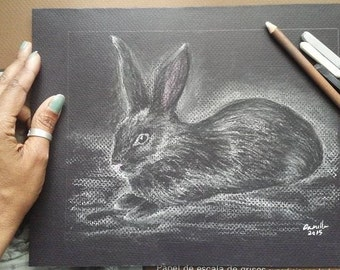 "Pencil Drawing Black Bunny Laying Down - Original Drawing 9"" x 12"" READY to SHIP"