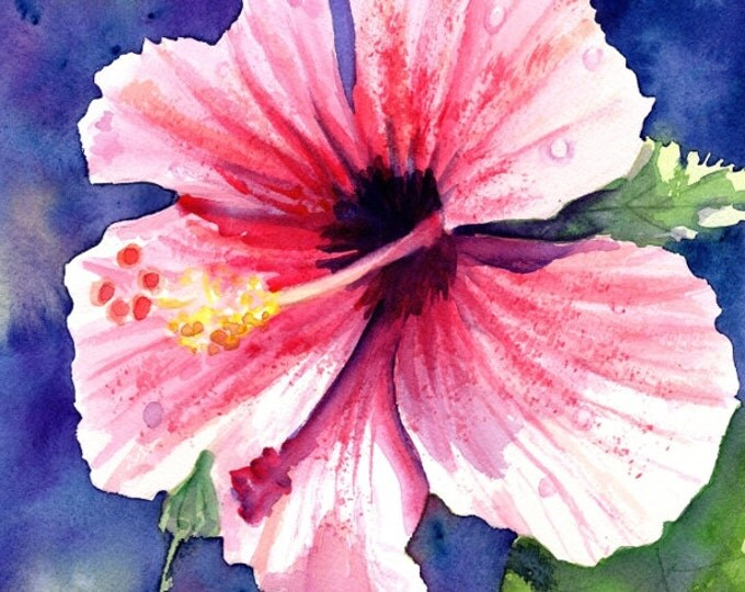 Original Watercolor Painting, Kauai Hibiscus, Tropical Flower Art, Pink Hibiscus Painting, tropical wall art, Hawaiian home decor