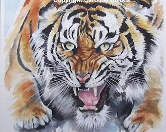 Tiger! Original Watercolour Painting