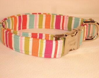 Beach Umbrella Summer Print Dog Collar by Swanky Pet