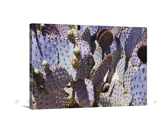 Arizona Cactus Art, Photography Canvas, Purple Cactus, Prickly Pear, Blue Cactus, Botanic Art, Violet, Giclee Canvas Print, Art for Home