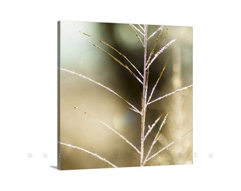 Nature Photography, Canvas Print, Giclee Canvas, Gold, Elegant Art, Abstract Art, Fine Art Photography, Minimalist Art, Framed Canvas