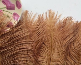 DELICATA OSTRICH PLUMES  , Gold, Amber   /  2020