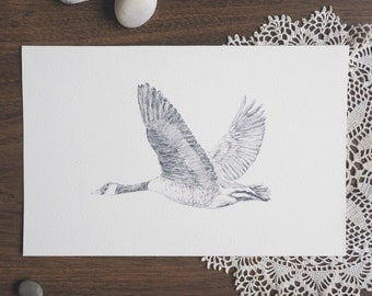 Migration // Canada goose in flight | Recycled cotton paper postcard