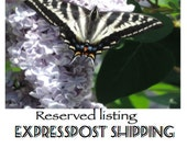 Reserved listing for upgrade to Expresspost shipping.