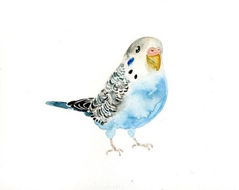 BUDGIE Original watercolor painting 10x8inch
