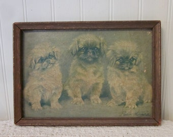 vintage Pekingese Dog framed print. Reigning Beauties by Persis Kirmse. Rustic, chippy, distressed frame and textured print.