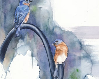 """Bluebirds """"ON the Hook"""" limited edition giclee print of original watercolor bird painting"""