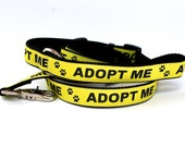 Adopt Me Dog Leash, 4 or 5 foot x 1 inch width,  Ribbon Lead, 100% Proceeds to TPSSR