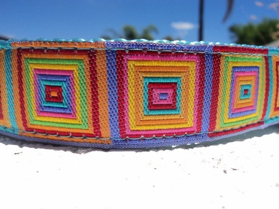 """Sale Dog Collar 1"""" wide Side Release buckle or Martingale collar style Prisms"""