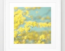Floral Photography - Blue and Yellow photo - Blooming flowers - Tree photograph - Pastel Colors - Modern Wall Print - Cottage Chic decor