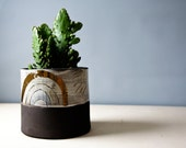 indoor ceramic planter MEDIUM, cacti planter, succulent planter, handmade pottery planter, modern planter, planter for him, black gold clay
