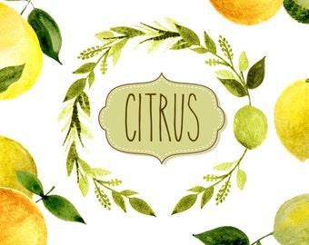 lemon clipart, fruit clipart, watercolor fruit clipart, watercolor lemon clipart