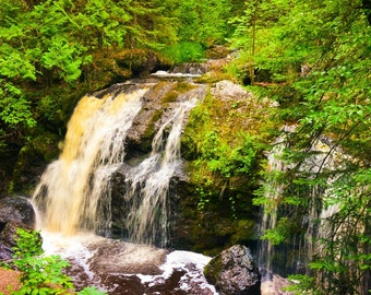 Nature Photography Amnicon Falls,waterfall,waterfalls,amnicon wisconsin,amnicon river,woodland,green forest,misty,rushing water,creek,river