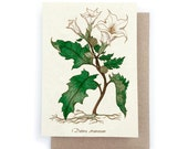 Jimson Weed Card - Plantable Seed Paper