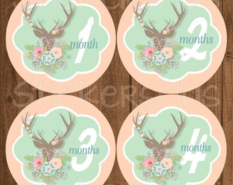 Baby Month Stickers Baby Girl Bodysuit Milestone Monthly Stickers Floral Deer Head Antler Antlers Woodland Photo Prop Nursery Decor