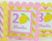 Lemonade Photo Banner, First Year Photo Banner, First Year Banner, Pink Lemonade Banner, Chevron Theme, Light pink and Yellow , c-1250