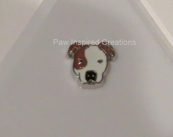 Brown and white Pitbull Floating Charm For Glass Memory Locket - Pitbull