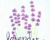 Lavender - 8x8 Watercolor Art Print