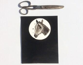 SALE Equuleus little foal constellation original illustration